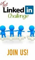 The LinkedIn Challenge December 2013